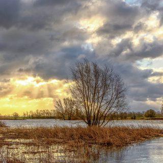 Storm op de Rijn