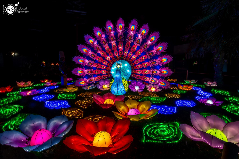 Chinese Light festival rhenen